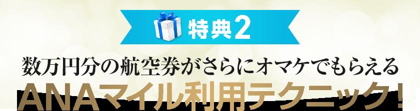 特典2 数万円分の航空券がさらにオマケでもらえるANAマイル利用テクニック!